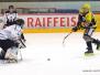 EHC Bucheggberg vs. SC Lyss, 1. Viertelfinalspiel 01.02.20